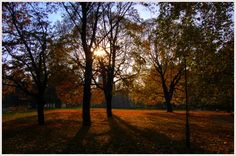 Wrocław's autumn