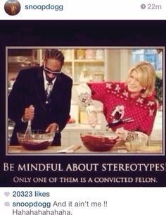 "Snoop Lion just posted this to instagram: ""Be mindful of stereotypes, only one of them is a convicted felon."""