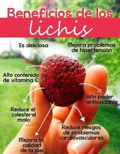 Beneficios de lichis