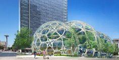 New Amazon Biospheres Are Now Spores Devouring Seattle