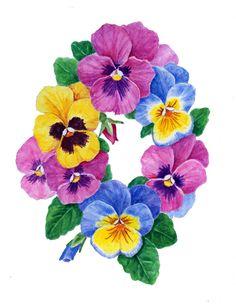 Pansy. Botanical Art, Botanical painting, Flower painting.