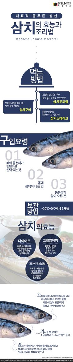 [오늘의 레시피] 대표적 등푸른 생선 삼치, 지금 먹어야 [인포그래픽] - 시선뉴스