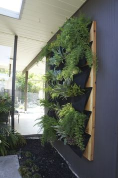 DIY living wall via @Karolina Bchner