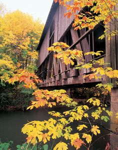 Cottage Grove Covered Bridge Tour Route | Travel Oregon