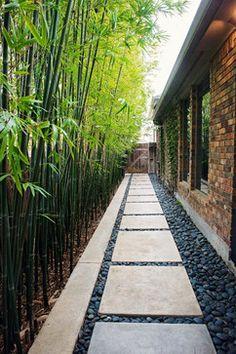 Hinterhof Trittsteine Gehweg und Bambuspflanzen als Zaun # . backyard stepping stones walkway and bamboo plants as a fence Hinterhof Trittsteine Gehweg und Bambuspflanzen als Zaun Cheap Landscaping Ideas, Small Backyard Landscaping, Backyard Patio, Walkway Ideas, Sideyard Ideas, Narrow Backyard Ideas, Side Walkway, Stone Backyard, Modern Landscaping