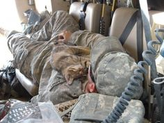 25 Touching Photos of Soldiers And Pets Who Became Best Friends Overseas.
