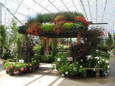 Garden Center Merchandising Display Ideas | The abundant roof garden....