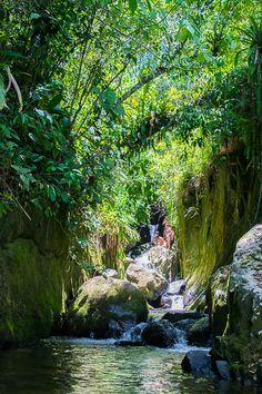 Indiana Jones Waterfall close to Sao Pedro da Serra and Nova Friburgo, in the State of Rio. Indiana Jones, Sound Of Music, Small Towns, Brazil, Rio, Eco Friendly, Nova, Waterfall, Traveling