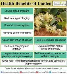 Health benefits of linden include its ability to strengthen immune system and prevent cancer. To read more about the health benefits click on