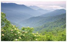 Appalachian Voices- preserving Appalachian area
