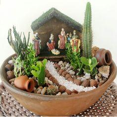 How can you design a mini garden? This question appears more and more frequently. Fairy Garden Pots, Dish Garden, Garden Terrarium, Succulent Terrarium, Terrariums, Garden Art, Garden Design, Succulent Gardening, Succulents Garden