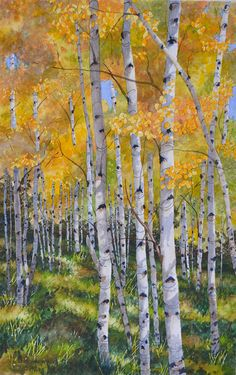 Larry C Haught WATERCOLOR - one of his gorgeous aspen paintings. Larry is a member of the Pikes Peak Watercolor Society and I consider myself fortunate to know him.