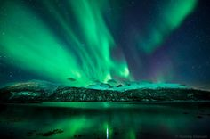 Hamarøy, Norway.  FB Page: Tommy Eliassen Photography    http://500px.com/tommyeliassen