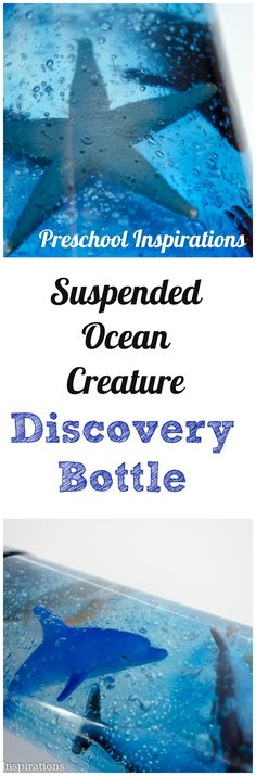 Make an ocean creature discovery bottle where the creatures stay in place | Preschool Inspirations