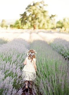 a field of lavendar..sigh! Gorgeous