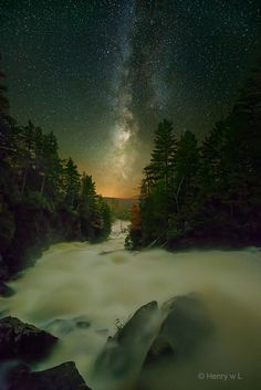 Starry night in Algonquin Park (Ontario) by Henry Liu / 500px