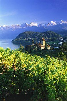 Spiez Thunersee, Switzerland