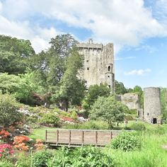 Blarney Castle and Gardens. Ein traumhaftes Ausflugsziel in der Nähe von Cork. #Irland #reisen @EntdeckeIrland Travel Tips, Attractions