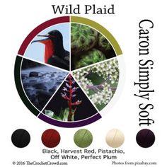 Caron Simply Soft Wild Plaid Color Combinations
