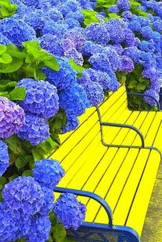 a bright yellow bench! why not?