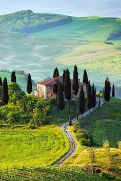 Tuscany is the place that my husband and I dream of going someday...  Val d' Orcia, Tuscany, Italy
