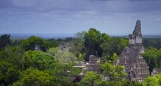 Bing Images as Wallpaper   Bing Images - Tikal - The Mayan ruins of Tikal rise from the jungle in ...