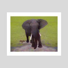 #INPRNT #fine art #print #poster #art Print Poster, Mammals, Safari, Wildlife, Elephant, Africa, Fine Art, Art Prints, Printed