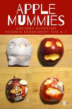 Learn about mummification with this apple mummy activity! Ancient Egypt Crafts, Ancient Egypt For Kids, Egyptian Crafts, Ancient Egypt Activities, Egyptian Art, Ancient Aliens, Ancient Greece, Fun Activities For Kids, Autumn Activities