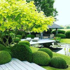 Landscaping design #design #instahome #homedecor #inspiration #livingroom #kitchen #bedroom #bathroom #home