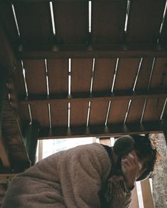 mbinn how are u today 😭 Ikon Member, Ikon Kpop, Ikon Wallpaper, Kim Hanbin, Ikon Junhoe, Yg Entertainment, Like4like, Instagram, Bobby