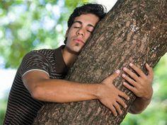 Hugging trees: Rehabilitation!