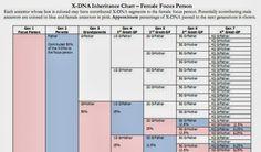 Deb's Delvings in Genealogy: X-DNA Inheritance Charts