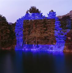 Light projections in Forest by Javier Riera