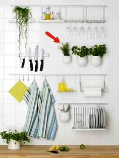 Ikea Asker pots for herbs? 6-inch pots, hung with s-hooks along asker rail - mounted in front of window? Do I really want bars on my windows? Maybe.