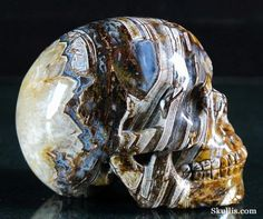 ✿ Tree Leaves Agate Crystal Skull ✿