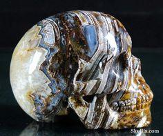 ✿ Tree Leaves Agate Crystal Skull ✿
