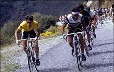 Vuelta a España 1985, Robert Millar, Alvaro Pino, Laguia, Ruiz Cabestany