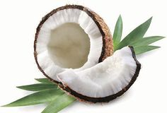 How many times do you cook meals and think about using coconut oil? If you are using coconut oil in the kitchen, you're not alone. Many chefs and foodies use coconut oil, coconut water and extract to. Coconut Oil For Acne, Coconut Oil Hair Mask, Coconut Oil Uses, Organic Coconut Oil, Coconut Milk, Coconut Lotion, Coconut Mojito, Coconut Smoothie, Coconut Cream