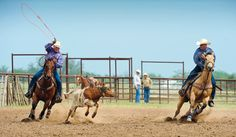 Handling the Pressure in Team Roping