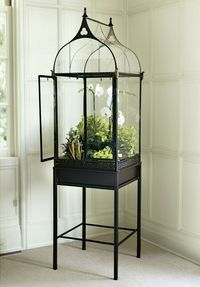 wrought iron terrarium