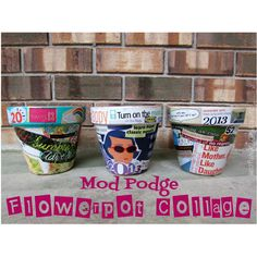 Just a little Creativity: Mod Podge Collage Flower Pots- New Years Goals Collage {Mother Daughter Pinterest Challenge #1} #pinchallenge