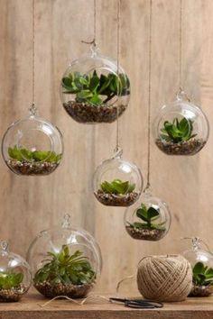 6Ideas para llenar deverde hogares sin jardín oterraza