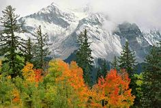 First Snow, San Miguel Peaks, Southwestern Colorado