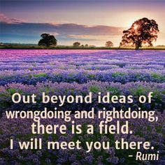 Out beyond ideas of wrongdoing and rightdoing, there is a field. I will meet you there. -Rumi