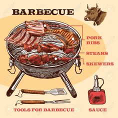 Meat bbq set sketch infographic with pork ribs and steaks