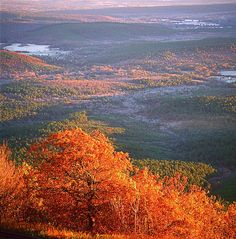 This is a 54 mile route that travels through the Ouachita National Forest from Talihina, Oklahoma to Mena, Arkansas. The drive meanders along the top of the Ouachita, Winding Stair, and Rich Mountains, and provides spectacular views.