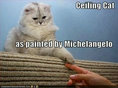 Ceiling Cat by Michelangelo