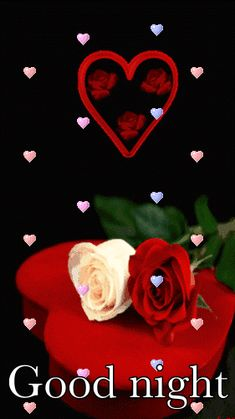 Best Good Night Rose Gifs, Awesome Red, pink, black roses with animated images. Top 30 rose gifs with good night messages. Good Night Love Images, Good Night Gif, Beautiful Love Pictures, Good Night Wishes, Good Night Sweet Dreams, Good Night Image, Beautiful Gif, Beautiful Roses, I Love Heart