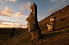 Moáis en Rapa Nui