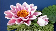 Bridgit's Quilling Water Lily's (Nymphaeaceae) Seerose - YouTube